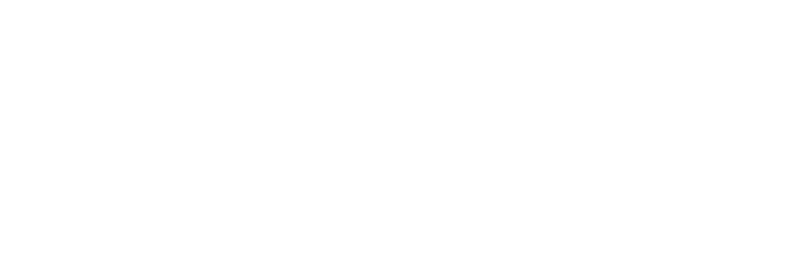 cropped-cropped-01_ds_logos-122.png